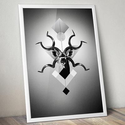 Kudu, création graphique, illustration, travail personnel